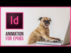 Creating Animations with InDesign CC 2018 Web Design, Tool Design, Layout Design, In Design Tutorial, Graphic Design Tutorials, Adobe Software, Adobe Indesign, Photoshop Illustrator, Ai Illustrator