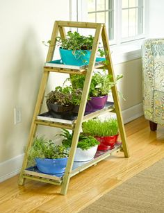 Viva Self-Watering Dish Planter, Round