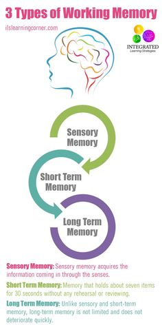 Types of Memory: Working Memory Tied to Your Child's Intelligence - Integrated Learning Strategies Learning Tips, Higher Learning, Kids Learning Activities, Sensory Activities, Learning Support, Learning Styles, Learning Process, Memory Psychology, School Psychology