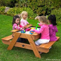Sand table/picnic table, with removable lid.  Lids are needed on sandboxes to keep evening animals like neighbors cats from using it as a litter box. ew.