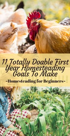 11 Feasible First Year Homesteading Goals - Back Road Bloom : 11 Feasible First Year Homesteading Goals - Click now to check out these awesome AND feasible homesteading goals that you can make as a first time homesteader! Homestead Layout, Homestead Farm, Homestead Gardens, Homestead Living, Farms Living, Homestead Survival, Survival Skills, The Farm, Mini Farm