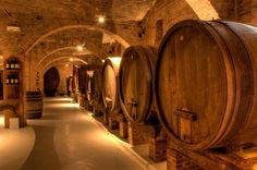 This wine tasting tour is a unique opportunity to discover Salento through its best wines, a tour designed for wine lovers, that wish to learn more about Salento wines, their production, culture and tradition.Departing from Lecce at 9am, you will tra