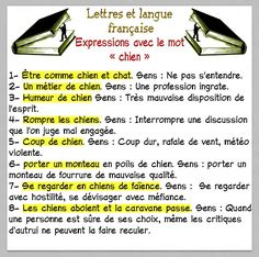 Expressions avec le mot CHIEN French Phrases, French Words, French Quotes, French Language Lessons, French Language Learning, French Worksheets, French Grammar, French Expressions, French Classroom