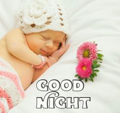 Good Night Images with flowers and nature - PIX Trends Sweet Good Night Images, Sweet Dreams Images, Good Night To You, Photos Of Good Night, Good Night Sweet Dreams, Happy Akshaya Tritiya Images, Happy Karwa Chauth Images, Cute Baby Girl Wallpaper, Good Night Wallpaper