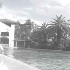 The beautiful Biltmore in Miami