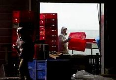 11-Apr-2013 9:01 - PERSONEEL VRAAGT OM BANKROET VLEESVERWERKER WILLY SELTEN. Drie vaste medewerkers van de verdachte vleesverwerker Willy Selten in Oss hebben faillissement van het bedrijf aangevraagd. Vakbond FNV…...