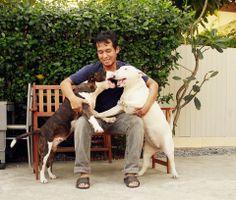 We love you papaaaa #TheBrix #BullTerrier #Dog #Hoyaa #Nicki