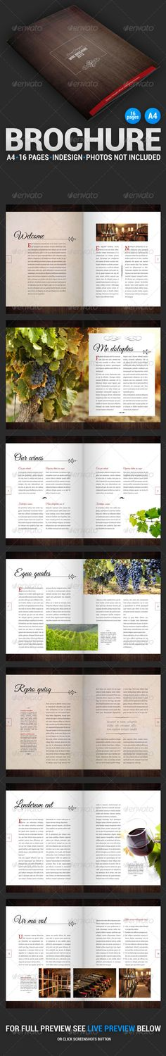 Wine Brochure 16 Pages - Informational Brochures