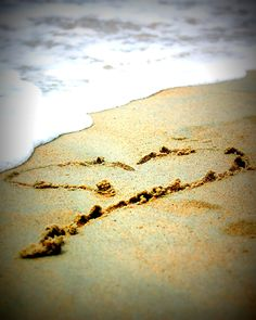 This pic reminds me of how every moment is like a beautiful drawing in the sand.... it's gorgeous, but time, like waves, will inevitably wash it away...