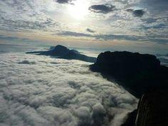 Hermosa vista desde el mirador Quati,  en el tope del Roraima Tepuy             www.venelands.com.ve