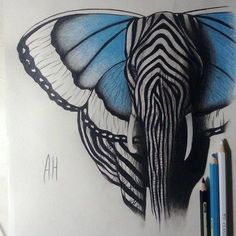Elephant Hybrid - elephant head & body with butterfly wings for ears and zebra stripes --- if I remember, I'll try to clean this pic up & repin it after so it will work better in cw (hopefully) ;)