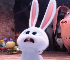 RIP- Ricky hahaha The secret life of pets -snowball Cute Bunny Cartoon, Cute Cartoon Pictures, Cute Disney Wallpaper, Cute Cartoon Wallpapers, Snowball Rabbit, Rabbit Wallpaper, Pets Movie, Pikachu, Secret Life Of Pets