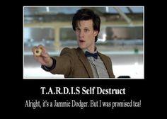 Tardis Self Destruct