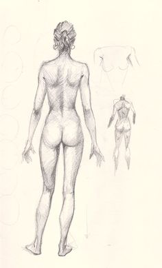 draw woman body back How to draw woman body basic