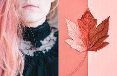 The Pantone Colour of the Year 2019 is 'Living Coral' - Features - Digital Arts Color Trends, Design Trends, Beautiful Hair Color, Colour Pallete, Color Palettes, Live Coral, Color Of The Year, Summer Colors, Pantone Color