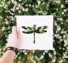 Dieser kreative Mann nutzt die Welt, um bunte Kunst Bilder zu machen - Silhouette Bilder