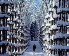 Snow Cathedral, Norway.