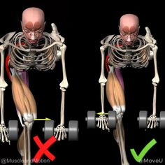 Get Bigger Arms, Single Leg Deadlift, Red Arrow, Pay Attention, Conditioning, Mistakes, Crossfit, Strength, Muscle