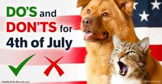 It's no secret that the 4th of July is a rough day for pets and July 5th is the busiest day of the year for animal shelters. http://healthypets.mercola.com/sites/healthypets/archive/2017/07/04/4th-of-july-pet-safety-tips.aspx?utm_source=petsnl&utm_medium=email&utm_content=art1&utm_campaign=20170704Z1&et_cid=DM149458&et_rid=2066005081