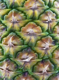 Pineapple skin texture