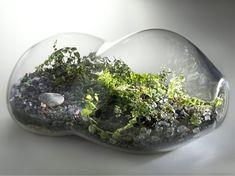 http://remodelista.com/img/sub/paula-hayes-sideways-terrarium.jpg