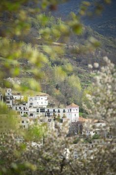 The village of Trevélez is the highest in mainland Spain, perched on a hillside in Las Alpujarras, foothills of the Sierra Nevada in Andalusia, Spain/// photo by Philip Lee Harvey #anadlusia #alpujarras #spain