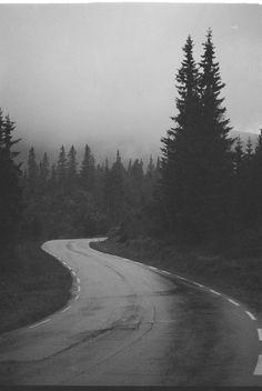 misty dark road
