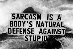 my life is sarcasm....obviously everyone must be stupid