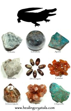 Blue Apatite & Alligator Animal Totem - Daily Crystal Nugget - Information About Crystals As A Healing Tool