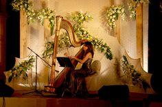 Harp Show #3