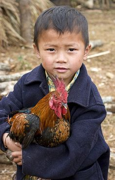 Laos ~ Another chicken  Thajok is a Hmong village in the east of Laos close to the Ho Chi Minh trail where there was heavy bombing by the Americans in the early 1960s.
