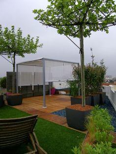 Terrasse végétale de toit d'immeuble parisien