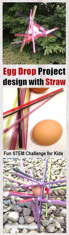 STEM Challenge: Egg