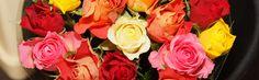 Bijzonder rozenboeket