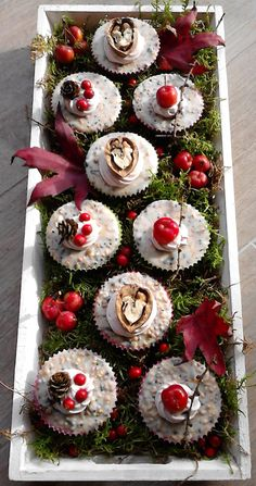 Cupcakes, Mini Schnauzer, Bird Houses, Strawberry, Birds, Diy Crafts, Treats, Fruit, Garden