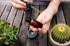 Natural Remedies: Skin Food – Free People Blog | Free People Blog #freepeople