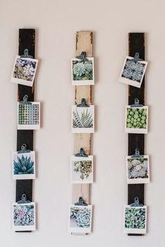 A cheap and clever way to display small photos.
