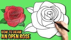 How to draw an Open Rose - Easy step-by-step drawing tuturial