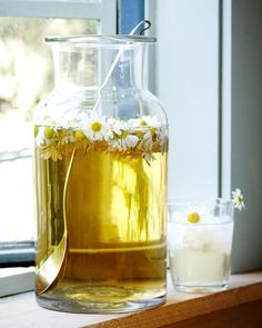 Chamomile Sun Tea — Kitchen Repertoire