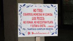 Deje a los Peces en Paz (Galería Francisco de Aguirre / Providencia).
