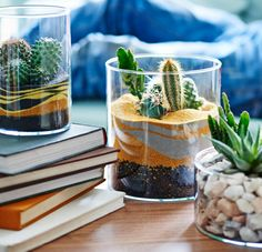 "A table terrarium You might think you have no space for an indoor garden – but all you need is part of a table. Cacti and succulents are easy to look after, so they're ideal if you don't have much time or are often away. A collection of ""cactus-scapes"" creates drama, so have fun playing with different styles. Click to find out how to make your own."