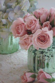 shabby fresh roses...