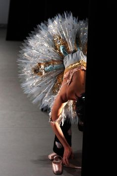 Tutu  (stand up woman, so I can see the bodice! )
