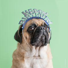 http://europug.eu/ It's my 4th birthday today