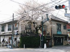 Shimokitazawa, Street View, Banana, Bananas, Fanny Pack