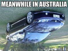 meanwhile-in-australia - Ha, Ha, so funny, I already knew the water went down the plug hole the other way around . Meanwhile In Australia, Sky Go, Funny Jokes, Hilarious, Funny Sayings, Funny Video Clips, Meme Pictures, Humor, Australia Meme