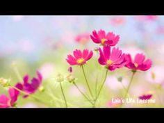 Abraham Hicks: Explains the process of how to feel good now!