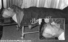 Ted Bundy, Serial Killer