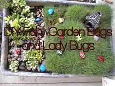 Lady Bug Rocks DIY for the Fairy Garden
