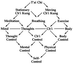 Figure shows the dynamic of yin-yang balance. The right side of the diamond follows the yang elements of T'ai Chi. The left side follows the yin elements. // Diagram from Ride the Tiger to the Mountain, a taijiquan instruction manual by Martin and Emily Lee.